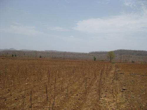 Fields_need_irrigation