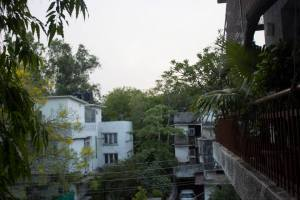 The view from my room in Delhi