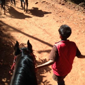11 Year Old Boy that took me to the top of the mountain on a horse. He told me in Hindi that he loves horses.