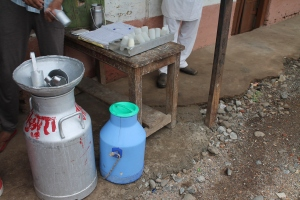 Dairy Co-Operative