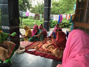 Typical WFG meeting in a local panchayat, bringing together local women to bring forth issues and create solutions