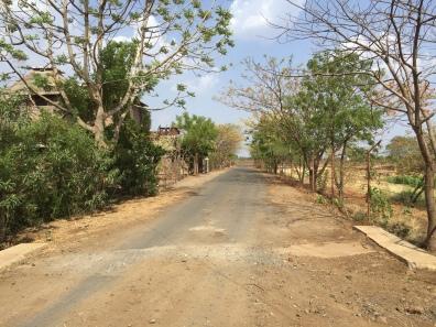 Road outside SPS