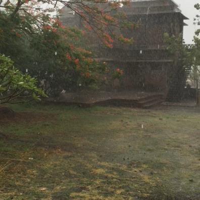 Monsoon Rain this Morning